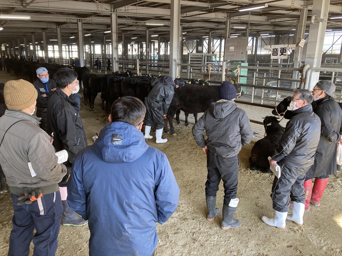 2021年2月20日 畜産部 酪農畜産課
